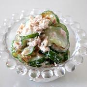 ツナ缶でうまみアップ!きゅうりとツナのサラダのレシピ