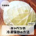 お好み焼きにも使える!キャベツの冷凍保存の方法