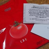 ト・マ・ト( *´艸`)