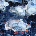 牡蠣の BBQ ~ 焼き鳥のたれで牛レバー