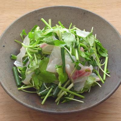 白身魚とセリのサラダ