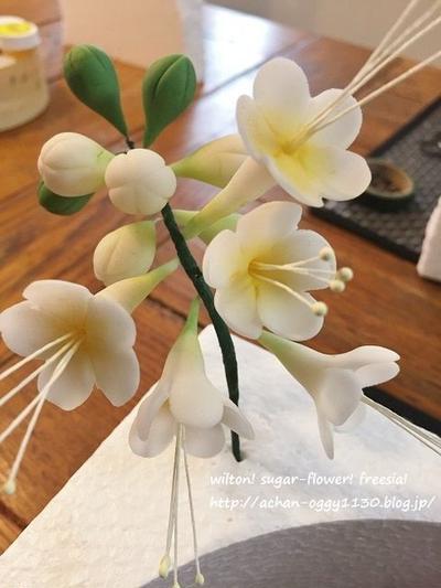 シュガーで作るお花たち