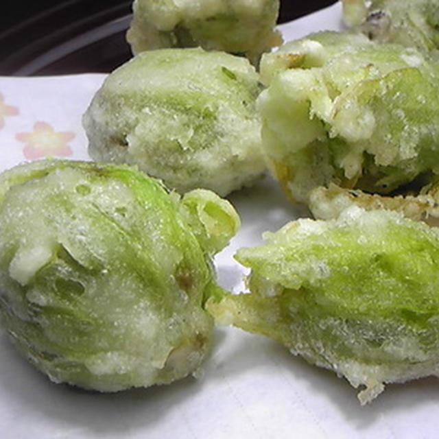 ふきのとう 天ぷら レシピ