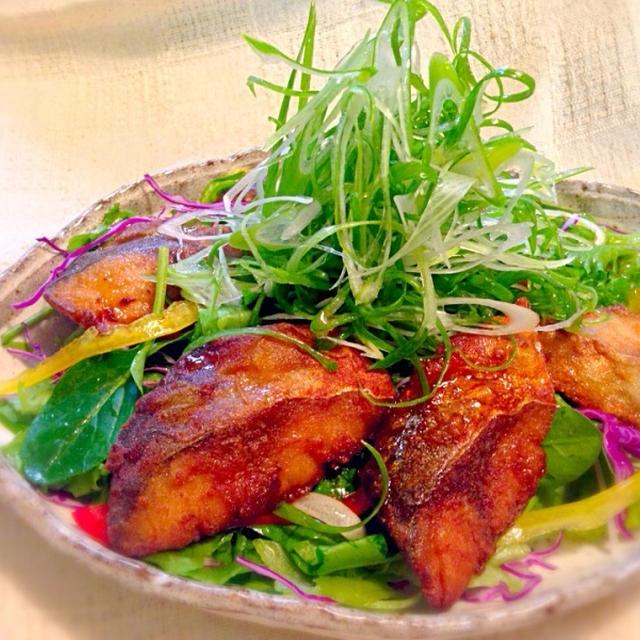 サイリウム鯖(さば)のサラダ!?