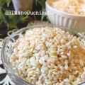 お家で発酵食品♪ 【発芽玄米】と【リジュベラック】