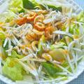 のっけるだけで簡単!ワンプレートカフェ飯風〜しらすと大根と竹輪の雑穀サラダごはん。