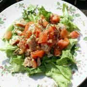 栃木県産トマトとスモークチキンのマリネサラダ 漬けといてレタスの上にどさっと!