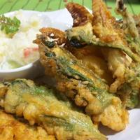 洋風天ぷら<筍・ウド・ささみフリッター> &液体塩麹入り~たけのこご飯 (キッチン ラボ)