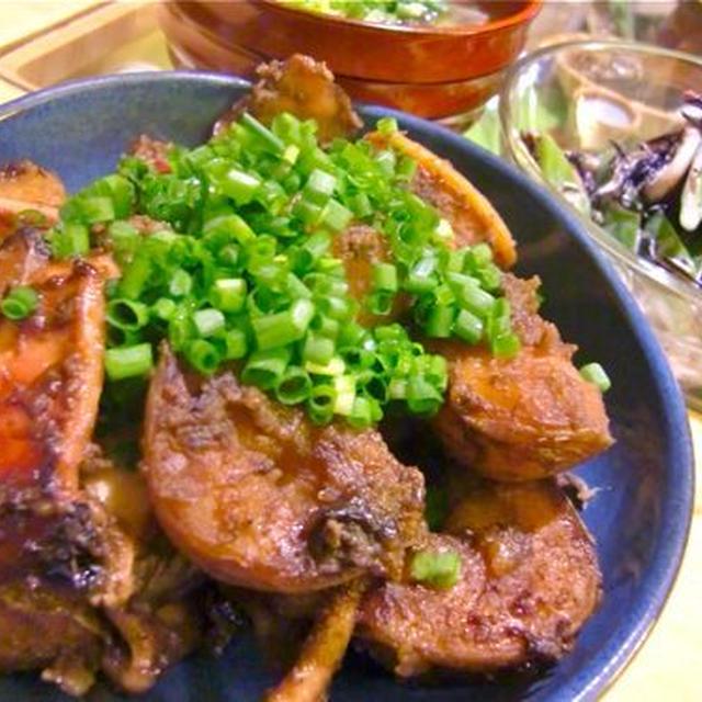 イカと新じゃがいもの肝煮×イカとひじきとモロッコいんげんのサラダ
