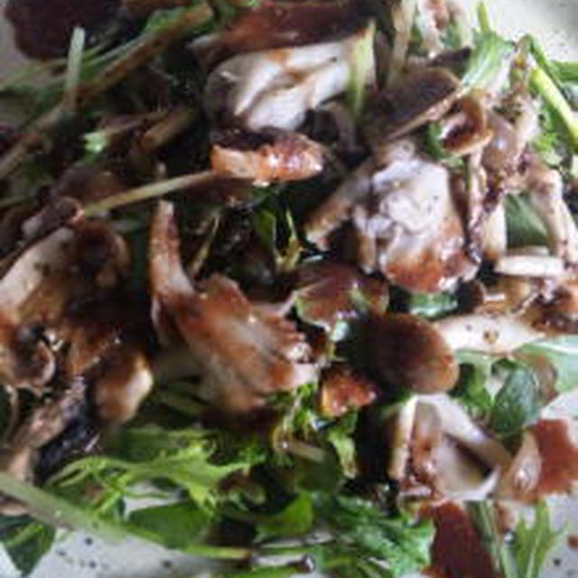 キノコと水菜・クレソンのサラダ・アジロンぶどうのドレッシング
