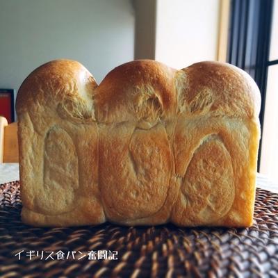 イギリス食パン奮闘記・完結編