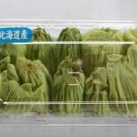 ふきのとうの天ぷら☆衣がサクッ、ほろ苦い春の味です。