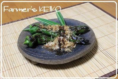 緑ばっかり  ~レシピは『焼き甘長とうがらし』です~