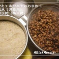 味噌作り2011★ レシピ&ポイントの覚え書き