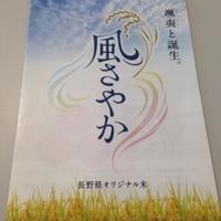 長野県オリジナル米「風さやか」体験イベント参加しました♪