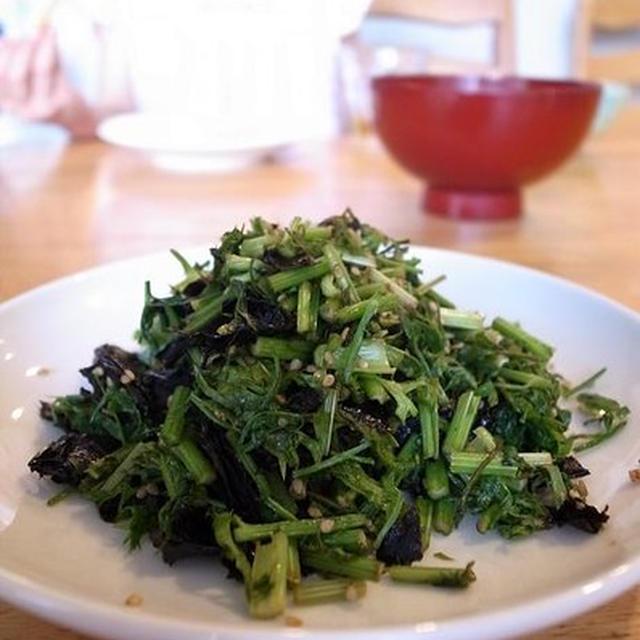 ごはんと一緒に、にんじんの葉と茎のごま油炒め|マオ助画伯の自画像