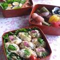 お花見に✿ 海老と筍、菜の花の柚子胡椒いなり寿司弁当