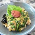 イカと梅のネバトロ丼。アレルギーで美味しく食べられるレシピ。