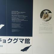 円山動物園と高校野球南北海道大会決勝