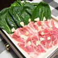小松菜と豚肉の蒸し常夜鍋【ぐんまクッキングアンバサダー】ホットプレートで火を使わず放っておくだけ簡単おつまみ。
