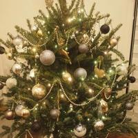 2017:IKEAのクリスマスツリー販売の初日。