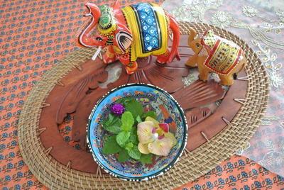 日本の夏のタイ料理