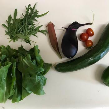 庭取れ野菜のセロトニンUPサラダ