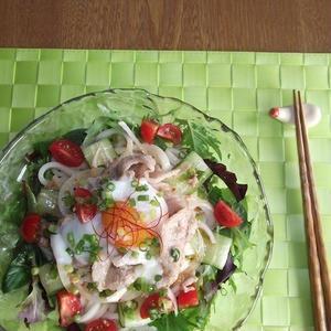 暑い時こそさっぱり&がっつり食べたい!肉のせ「サラダうどん」