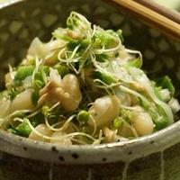 ブロッコリースーパースプラウトと白いんげん豆のサラダ
