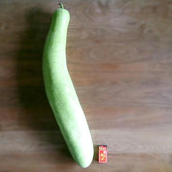 野菜の日の気付き