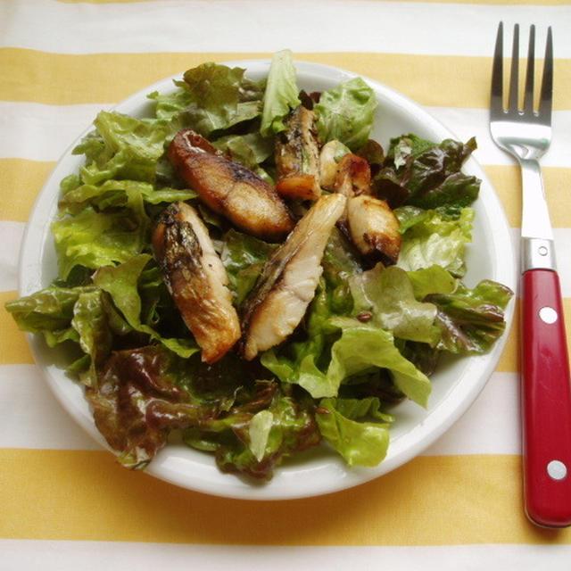 サバとサニーレタスのサラダ【Mackerel and Leaf Lettuce Salad】