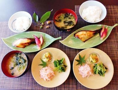 お味噌・・・(汗)~銀鱈の味噌漬けと小松菜の胡麻和え~