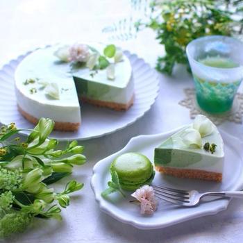 抹茶のグラデーションレアチーズ(★レシピあります)