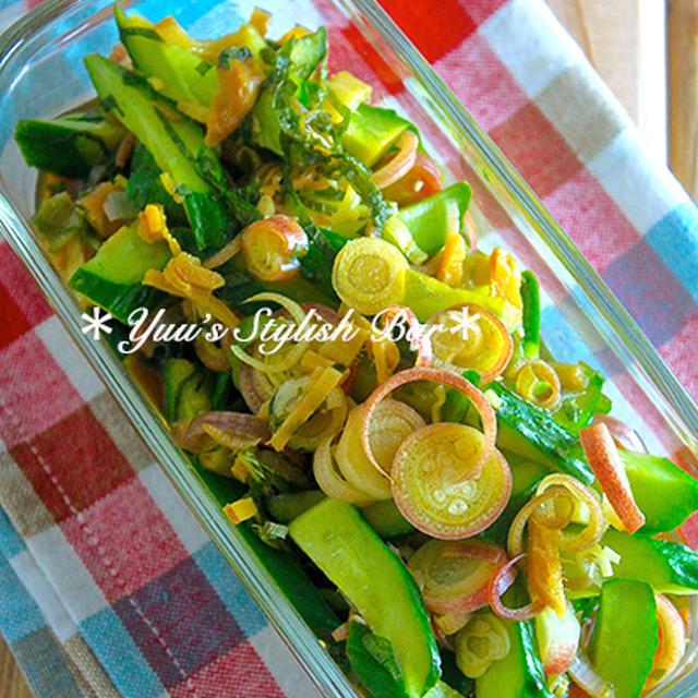 日持ち1週間♡夏にピッタリのサッパリ副菜♡『きゅうりの香味野菜漬け』《簡単*節約*作り置き*お弁当》