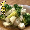 ブロッコリーとイカの温サラダ