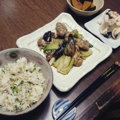 鶏肉と茄子とチンゲン菜炒め