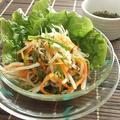 タイ料理はちょっと・・・な旦那も入りやすい!?パクチー入りタイ風ドレッシングでサラダ