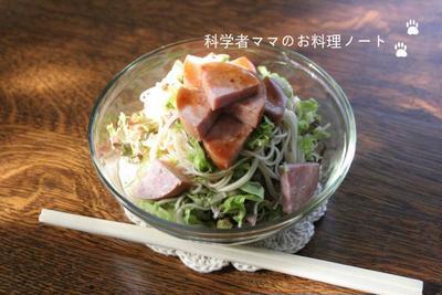 暑い季節に☆おやつ素麺