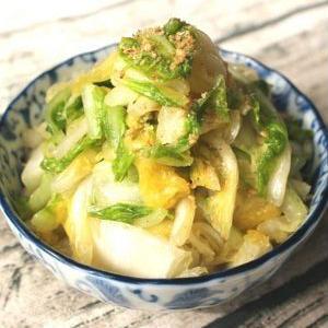 大量消費&節約に♪「白菜」の作り置きレシピ