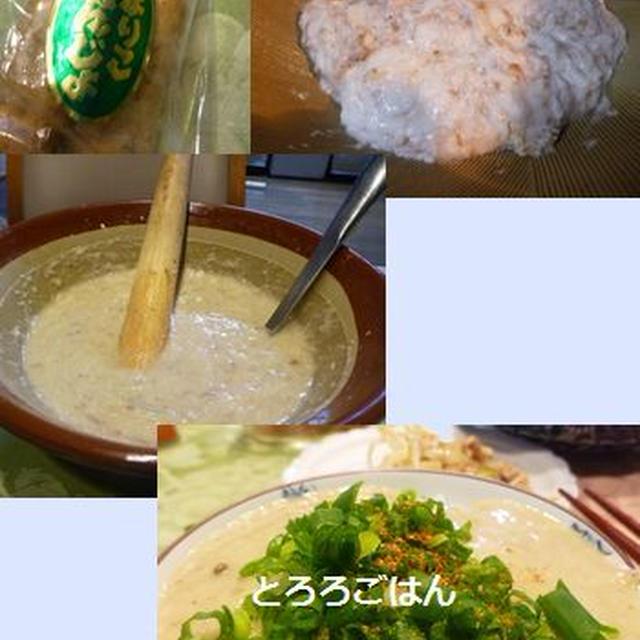自然薯のとろろ汁、銀杏、ブリ大根、もやしと豚肉の胡麻油ドレッシング和え、コチの刺身