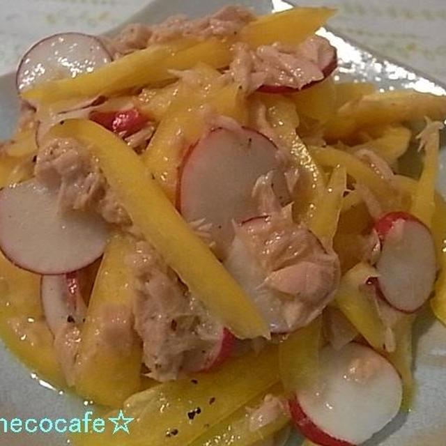 パプリカとラディッシュのツナサラダ