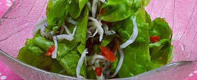 お肉を巻くだけじゃない!サラダに使おう♪「サンチュ」レシピ