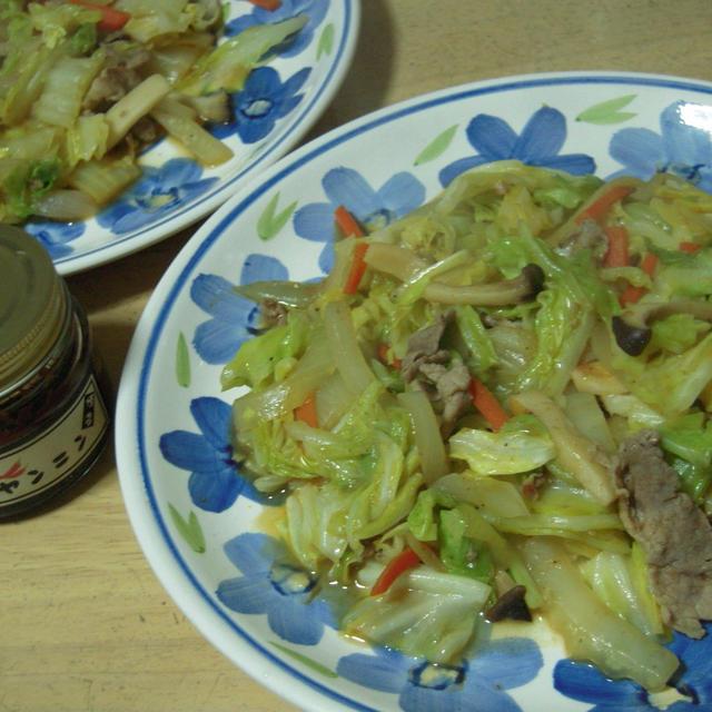 野菜炒め・辛かヤンニン風味