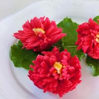 赤大根で、美しい菊花大根