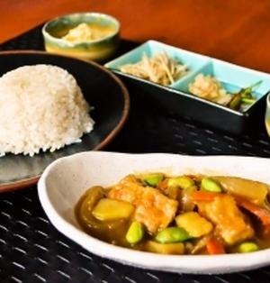 【ジャパニーズ ベジタリアンカレー】凍み豆腐がポイント!