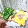 パクチー&ツナ・オムレツのトーストサンド