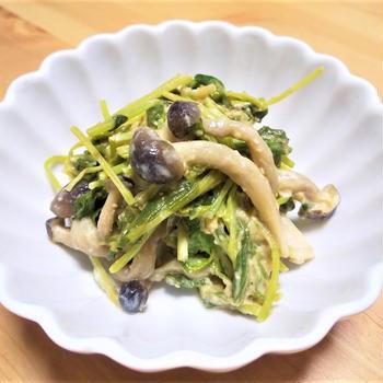 野菜をたっぷり!【豆苗×しめじ】を使って胡麻和えレシピ3種
