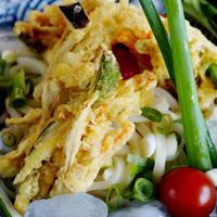 【季節のお野菜で ぶっかけ冷やし掻き揚げうどん】亀城庵さんのモニター料理です♪