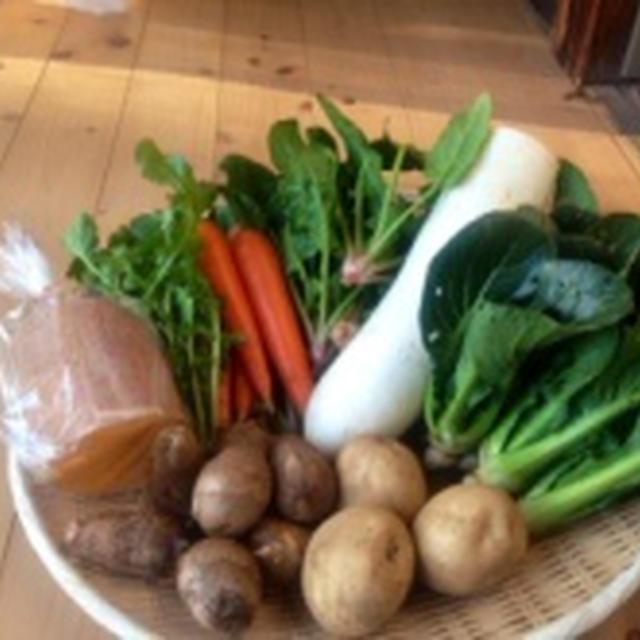 千葉県佐倉市・旬の有機野菜◆もうり農園1月4週野菜セット