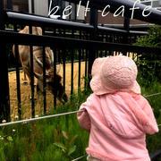 ママを独り占めした円山動物園